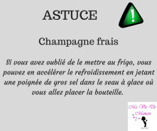 ASTUCE (11)