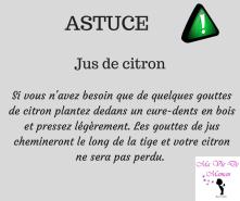 ASTUCE (12)