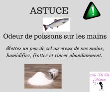 ASTUCE (22)